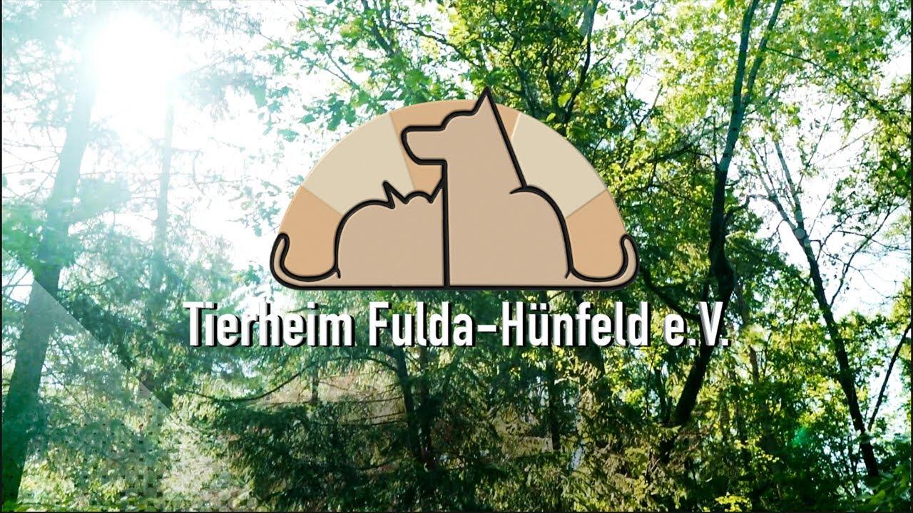 Tierheim Fulda-Hünfeld e.V., Fulda