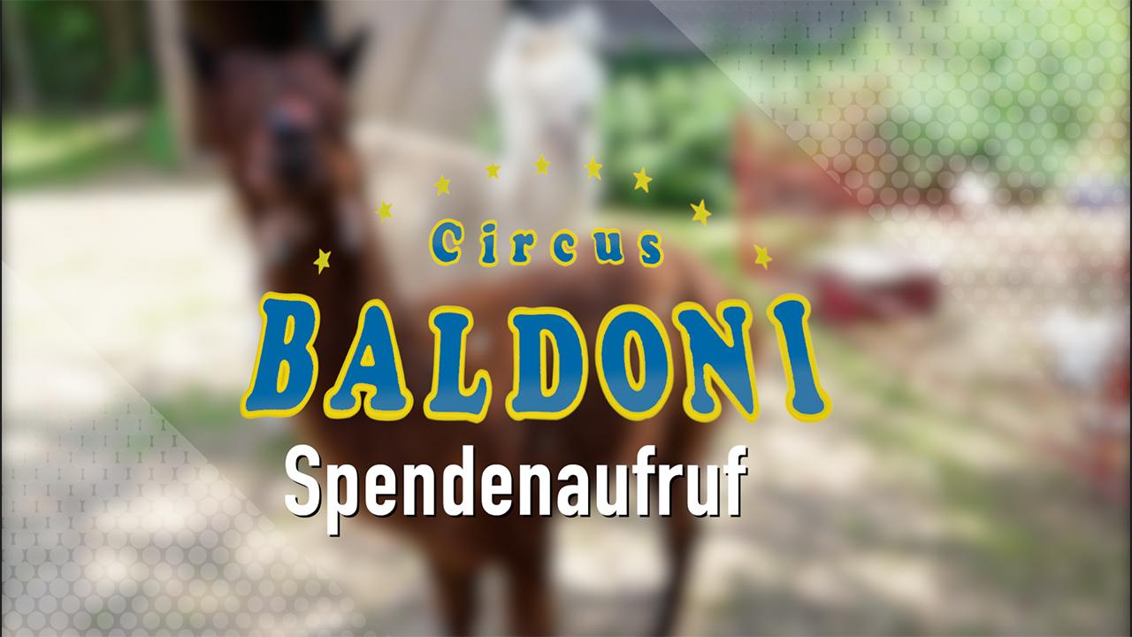 Hilfeaufruf für die Zirkusfamilie Baldoni