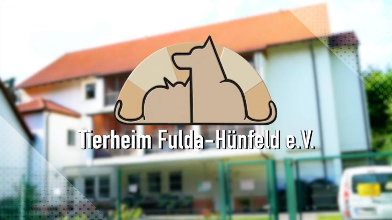 Tierheim Fulda -Hünfeld e.V Imagefilm